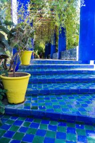 Jardin Marjorelle - by Yve St Laurent