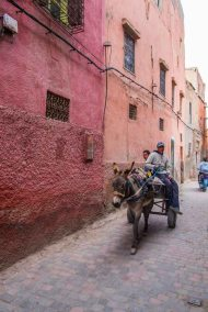 Morocco-4625