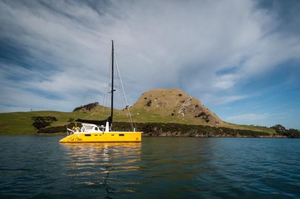 Sel Citron, June 2014, Urquharts Bay, NZ
