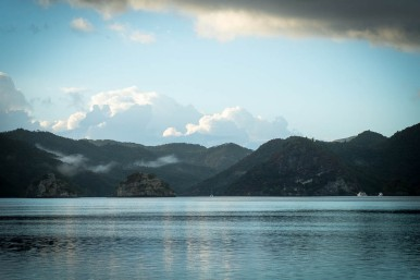 Great Barrier Island-176