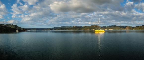 Great Barrier Island-31