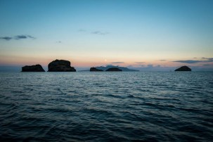 Great Barrier Island-55