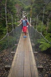 Great Barrier Island-7