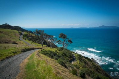 Mangawhai Cliffs Walk