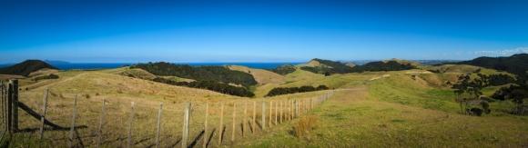 Mangawhai Cliffs Walk
