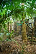 The gaol hidden in the forest