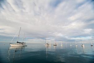 Musket Cove Regatta-4021