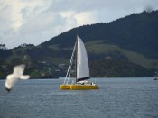 Sail Trials-1000907