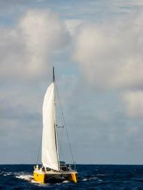 Fiji to NZ 2014-5891