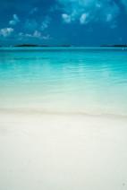 Fantazia Caribbean-8536