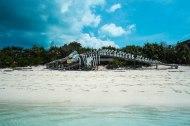 Fantazia Caribbean-8538
