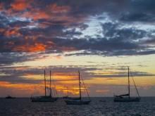 Fiji 2014-3718