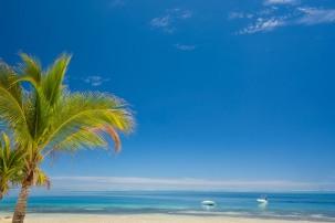 Fiji 2014-6871
