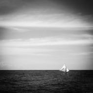 Fantazia Caribbean-8642