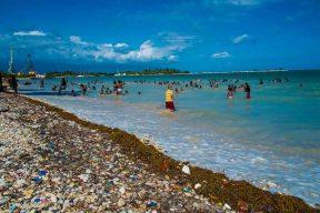 Confetti Beach, Barahona