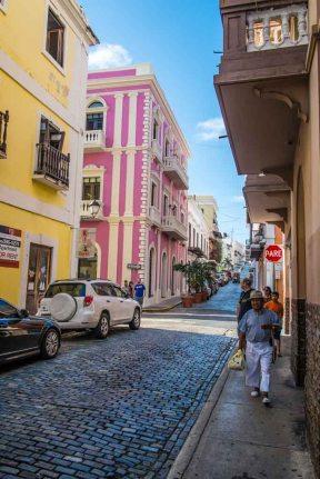 Fantazia Caribbean-9389