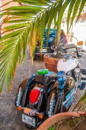 Fantazia Caribbean-9395