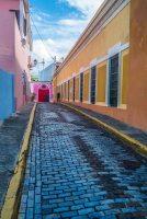 Fantazia Caribbean-9410