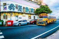 Fantazia Caribbean-9433