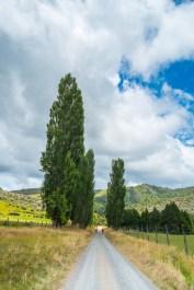 Tongariro Crossing-8054