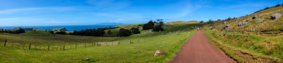 Walking on Waiheke-1600