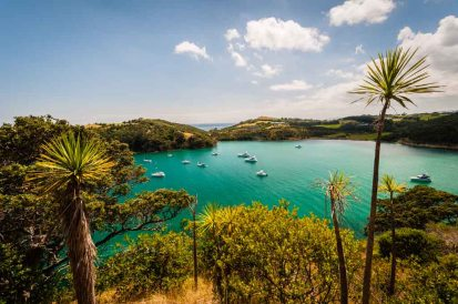 Walking on Waiheke-4836