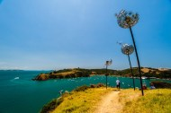 Walking on Waiheke-4867