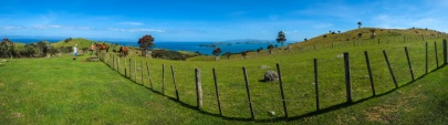 Walking on Waiheke-7770