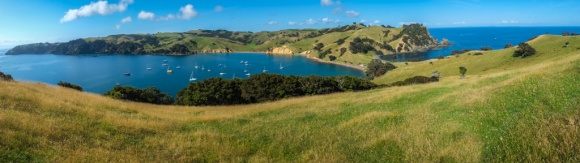 Walking on Waiheke-7782