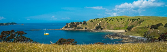Walking on Waiheke-7811