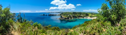 Walking on Waiheke-7880