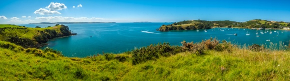 Walking on Waiheke-7902
