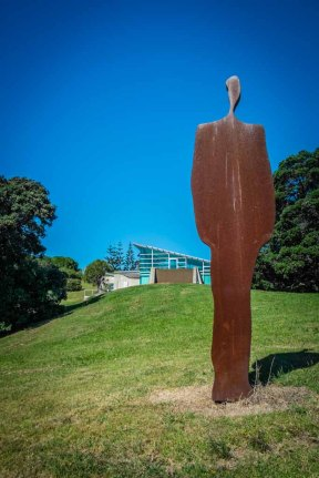 Walking on Waiheke-7910