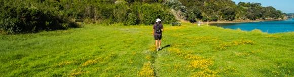 Walking on Waiheke-7928