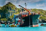 Fiji 2015-5224
