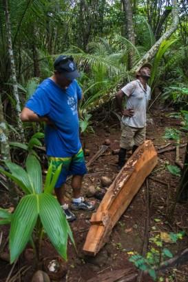 Fiji 2015-0344