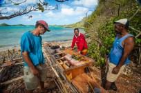 Fiji 2015-5993