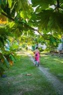 Fiji 2015-0018