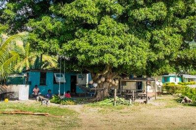 Fiji 2015-0218