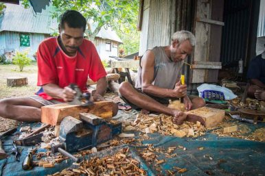 Fiji 2015-0302