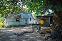 Fiji 2015-0512