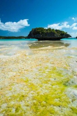 Fiji 2015-0651