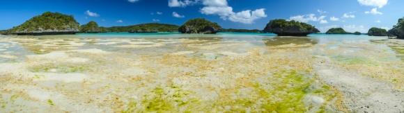Fiji 2015-0652