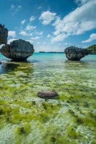 Fiji 2015-0695