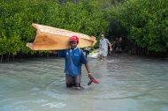 Fiji 2015-0955