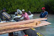 Sel Citron cargo barge