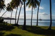 Fiji 2015-01163