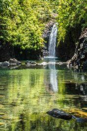 Fiji 2015-01243