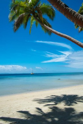 Fiji 2015-1376