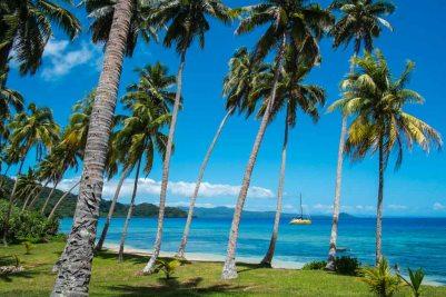 Fiji 2015-1433